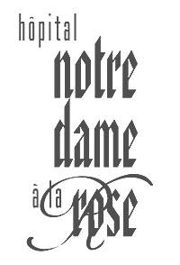 Logo-gris1